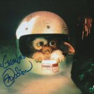 "Mark Dobson The Gremlins (1984) 8 X 10"" Autographed signed Photo (Reprint 2074) Great Gift Idea!"
