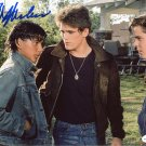 """Ralph Macchio The Outsiders / The Karate Kid 8 x 10"""" Autographed Photo (Reprint 2300)"""