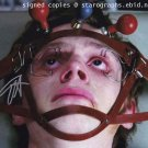 Evan Peters 8 x 10 Autographed / Signed Photo American Horror Story, Kick Ass (Reprint 875)