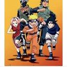 Naruto all 220 episodes in English