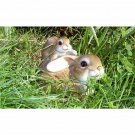 Mother and Baby Rabbit Garden Ornament