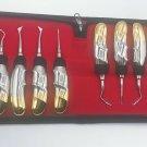 10 Pcs Dental Elevators Extraction Surgical Instruments Half Gold Finger