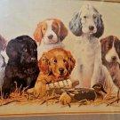 Hunting dog lot includes Dimensions Crewel Kit #1342, Mug & vintage wrap lab dog