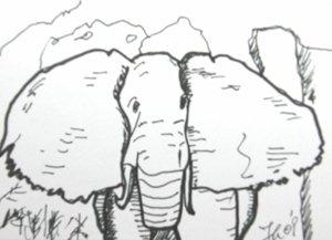 "c10 Elephant ACEO Pop Art Original Drawing 2.5 x3.5"" Free Shipping"