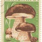 1958 Romania CTO: Mushrooms (Boletus edulis)