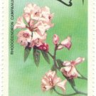 1976 Bhutan Stamp - Rhododendrons (Rhododendron campanulatum)