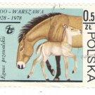 1978 Poland CTO: Warsaw Zoo Horses