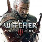 THE WITCHER 3: WILD HUNT STEAM ACCESS