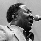 """MUDDY WATERS """"Live At The Forum 1978...& More"""" DVD R"""