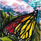 Monarch butterfly - sku:b1