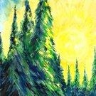 Northern Pine Forest - sku:c1