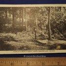 Postcard 1950s Scene At Epworth Forest North Webster Lake Indiana Black White