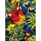 """Junior Small Paint By Number Kit 8.75""""X11.75""""-Majestic Macaws"""