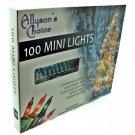 Allyson's Choice Teal Mini Lights