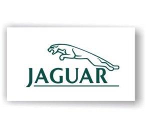 Jaguar Show Room Flag