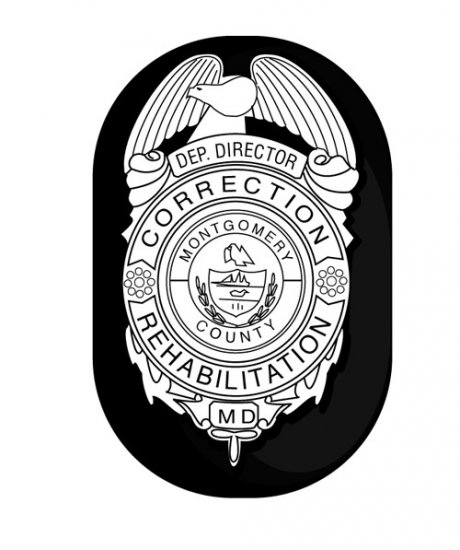 Safariland oval clip on badge holder