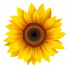 2 Inch Yellow Sunflower Vinyl Decal Stickers Yeti Hardhat Cellphone Tablet Laptop