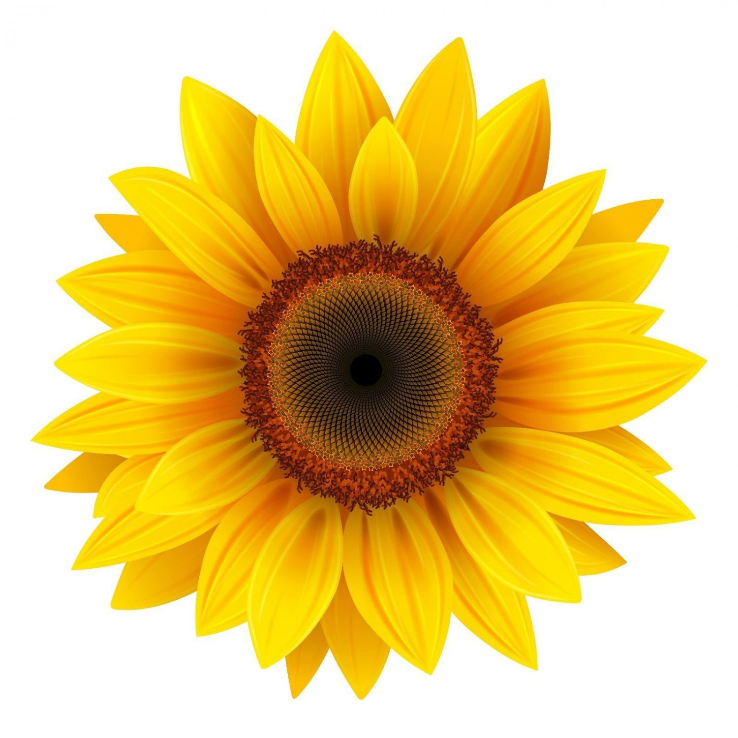 4 Inch Yellow Sunflower Vinyl Decal Stickers Yeti Hardhat Cellphone Tablet Laptop