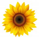 5 Inch Yellow Sunflower Vinyl Decal Stickers Yeti Hardhat Cellphone Tablet Laptop
