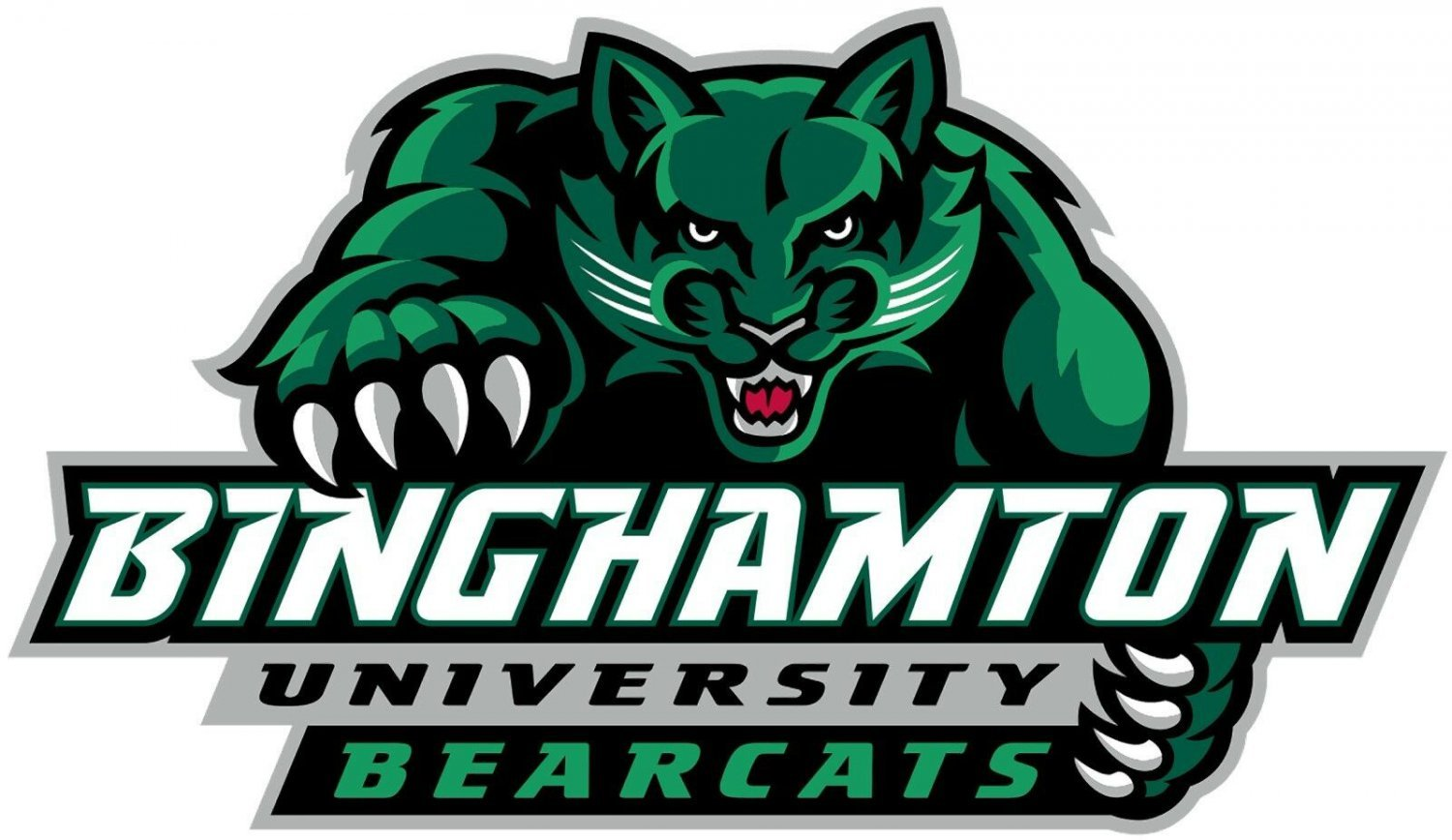 2 Inch Full Color Binghamton Bearcats Logo Vinyl Decal Cellphone Hardhat Sticker 00016