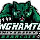 5 Inch Full Color Binghamton Bearcats Logo Vinyl Decal Yeti Laptop Truck Car Window Sticker 00016