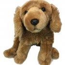 Animal Alley Golden Retriever Puppy Dog Plush Brown Stuffed Toys R Us 2000