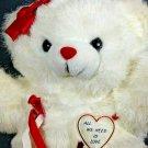Dan Dee Teddy Bear Plush RARE Vintage All We Need Is Love White Stuffed ANimal