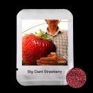 100Pcs Rare Big Giant Strawberry Fruit Seed For Home Garden Plants