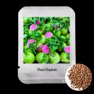 100Pcs Very Delicious Fruit Red Radish Vegetable Seeds For Home Garden Plants