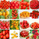 20 Pcs/Lot Rainbow Tomato Plants, bonsai organic vegetable & fruit PlantasSeeds