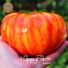 50Pcs Heirloom Big Rainbow Stripey Beefsteak Tomato Garden Bonsai Seeds