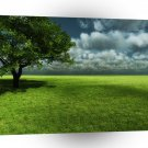 Abstract Landscape Endless Green Of Grass A1 Xlarge Canvas
