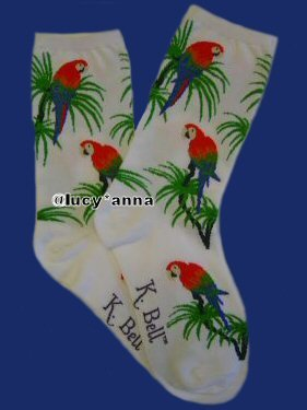 K.Bell Scarlet Macaw Socks White