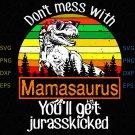 Mamasaurus svg, Don't Mess With svg, Mamasaurus, Mamasaurus clipart, vitnage svg