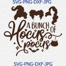 A Bunch Of Hocus Pocus Svg, Png, Cut File, Halloween Svg, Sanderson Sisters Svg, Halloween Party Svg