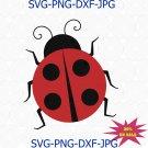 Lady bird svg, Papercraft Ladybug,Lady bug,Lady beetle,Ladybug svg,Coccinellidae