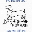 Dachshund Shirt, Funny Dog Saying, Dachshund Svg, Wiener dog Dog Svg, Country Music Shirt