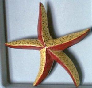 Retro Old Painted Wood ? Starfish Pin
