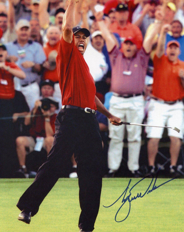 Tiger Woods signed autographed 8x12 photo photograph rc auto SP authentic