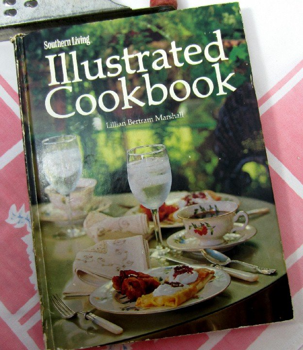 Southern Living Illustrated Cookbook Lillian Bertram Marshall Vintage 1976 hc