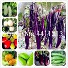 50 Pcs Black Purple Yellow Eggplant,Italian Eggplant Bonsai,Rare Auber