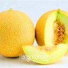 100 Pcs/Pack New Fresh Sweet Melon bonsai,Non GMO,Organic Fruit garde