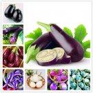 100 pcs Rare eggplant bonsai flower potted plant organic vegetable tre