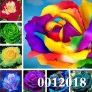 Big Promotion! 100 Pcs Rose Flower Indoor Bonsai Flower Plant Perennia