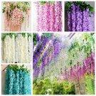 10 Pcs / Bag Wisteria Flower  Bonsai Purple Yellow White Pink Wisteria