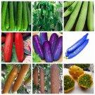 2018 Hot Sale 100 Pcs / bag Cucumber Bonsai Green Organic Fruits Veget