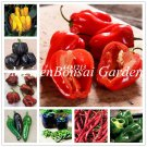 Chile Pepper plants 100 pcs Color Chili Organic Vegetable bonsai Finge