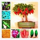 100 Pcs Chilli Bonsai Vegetable Diy Potted Plants Indoor Outdoor Papri