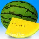 New Arrival!50 plantas/Pack Yellow Flesh Watermelon bonsai Potted Frui