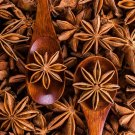 20 pcs bonsai tree  Star Anise Tree plants Illicium Verum Rare vegetab